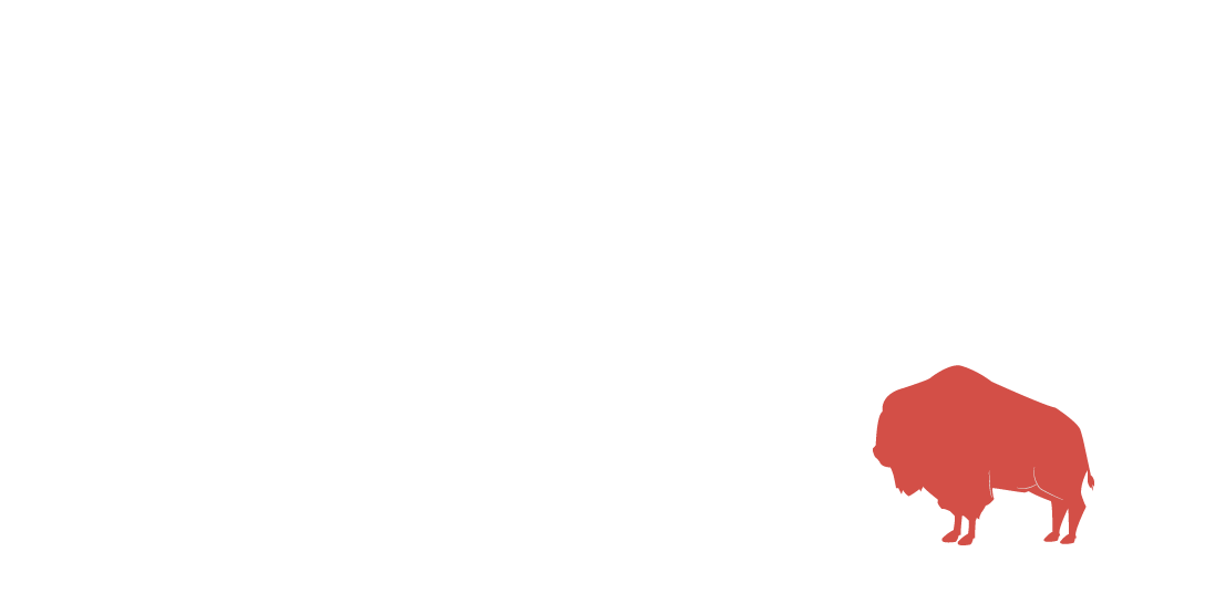 Big Buffalo Design